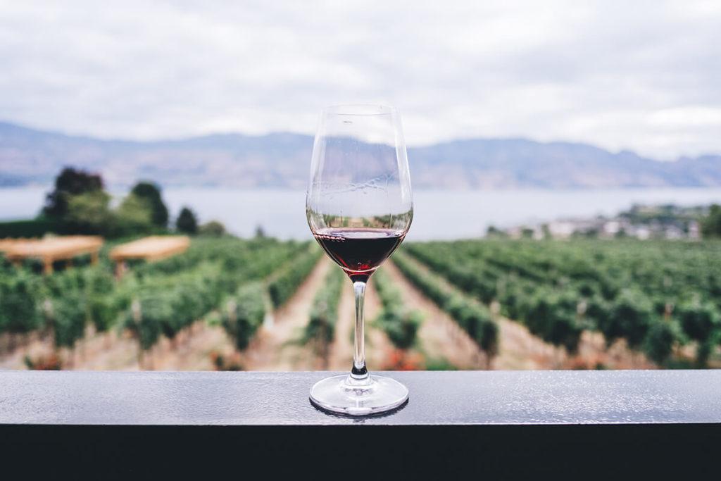 Wine glass on ledge in front of Kelowna Vineyard